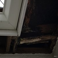 Leak Damage, Nelson, New Zealand