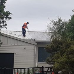 water blasting a roof in Nelson, New Zealand
